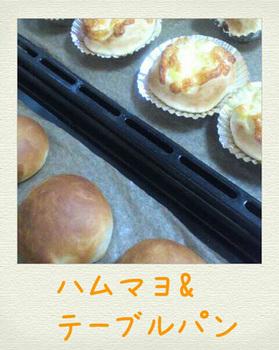 2012328142445.jpg_blog.jpg